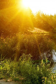 唯美秀丽自然风景