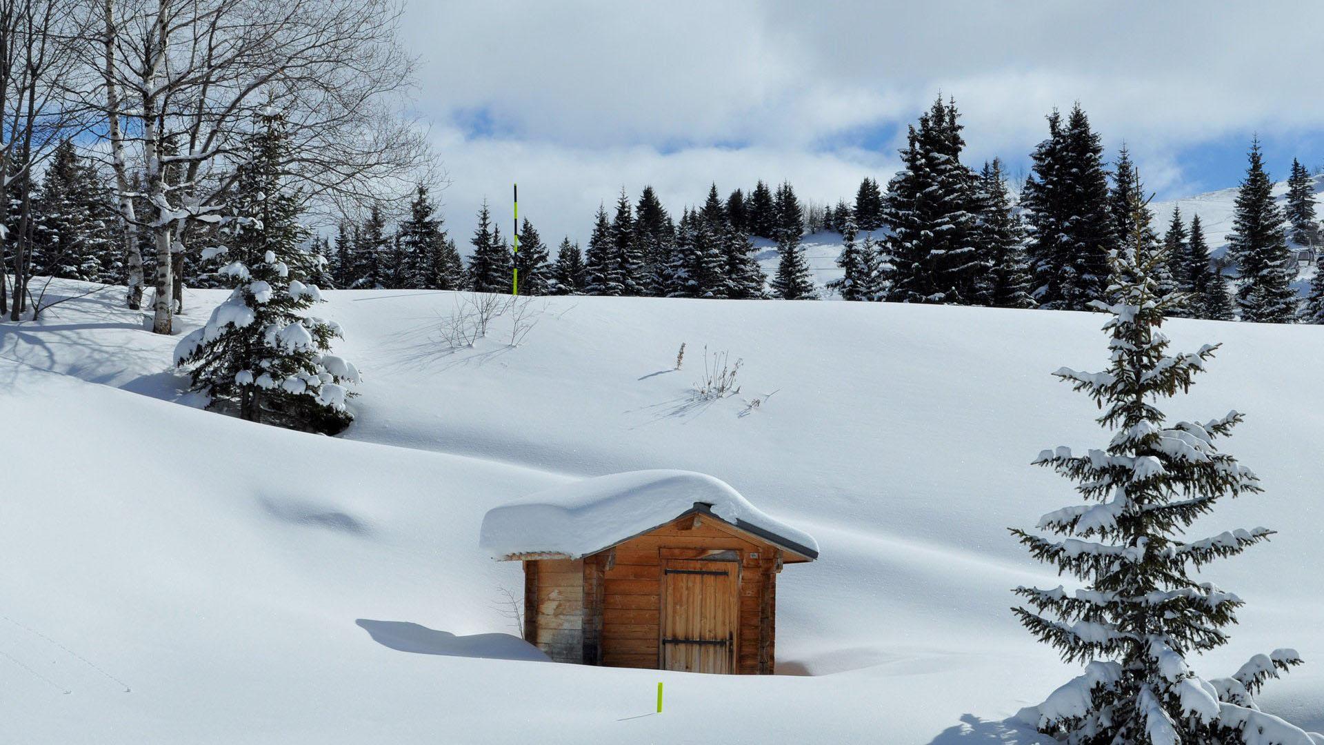 唯美意境冬日雪景