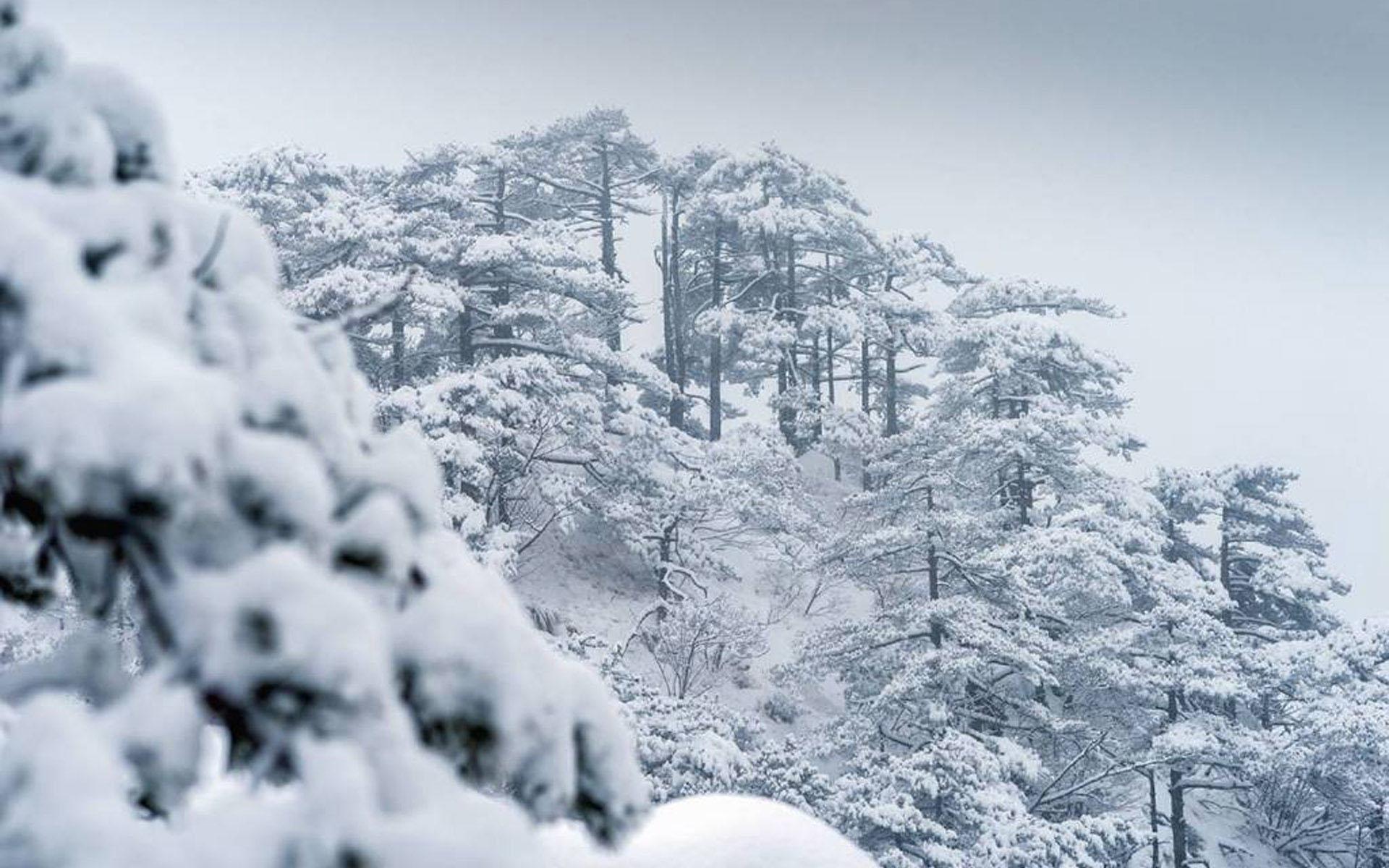 安徽黄山雪景